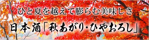 秋あがり・ひやおろし大特集